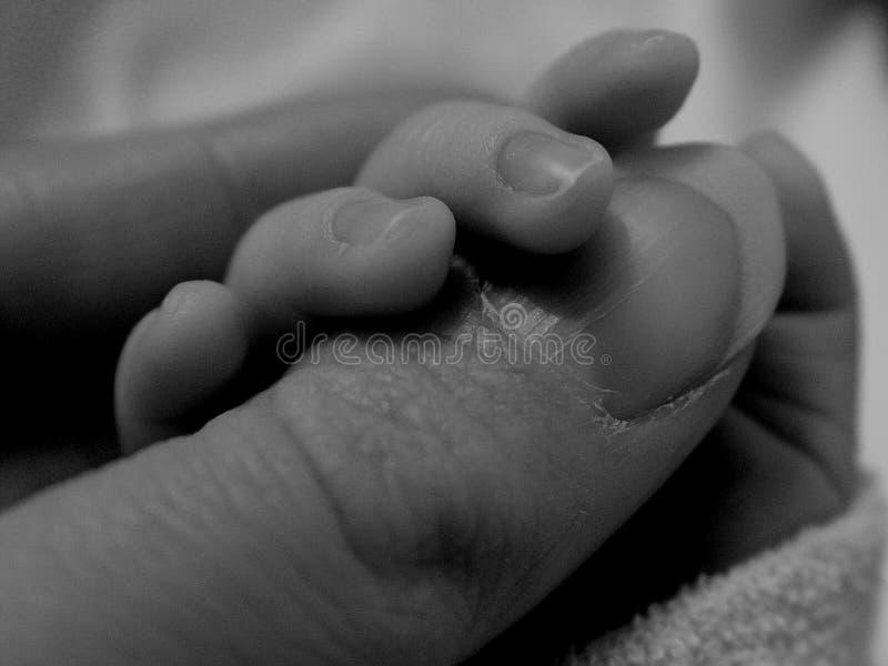 Dedo de la explotación agrícola del bebé imagen de archivo libre de regalías