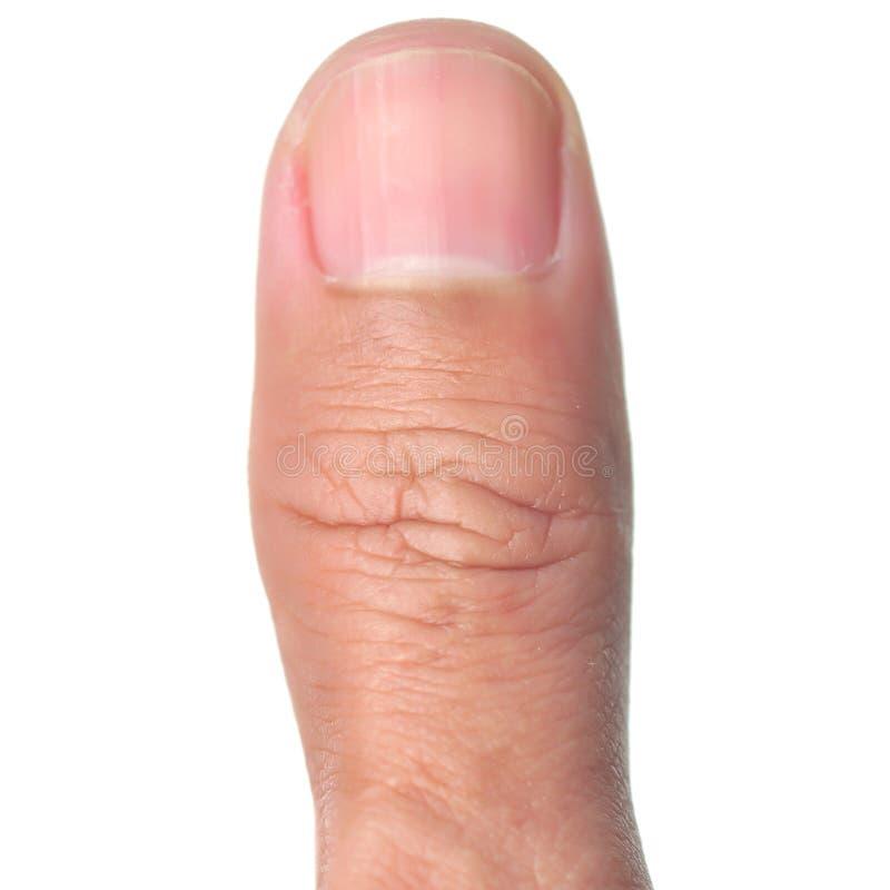 Dedo del pulgar foto de archivo. Imagen de anatomía, imagen - 29040972