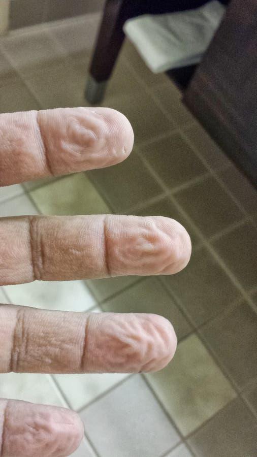 dedos foto de archivo