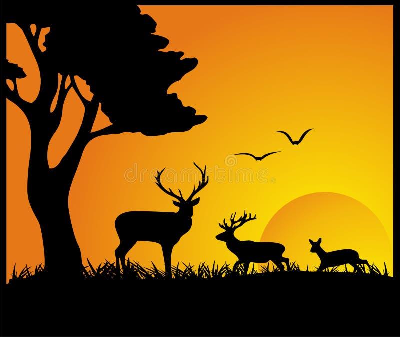 Deen In Forest-Schattenbild stockbilder