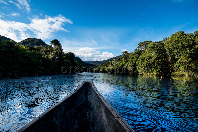 Deep in the Amazon Jungle stock images