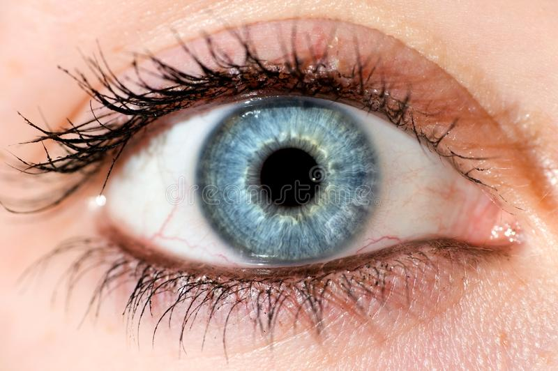 Deep blue eye.  Beautyful close up stock photography