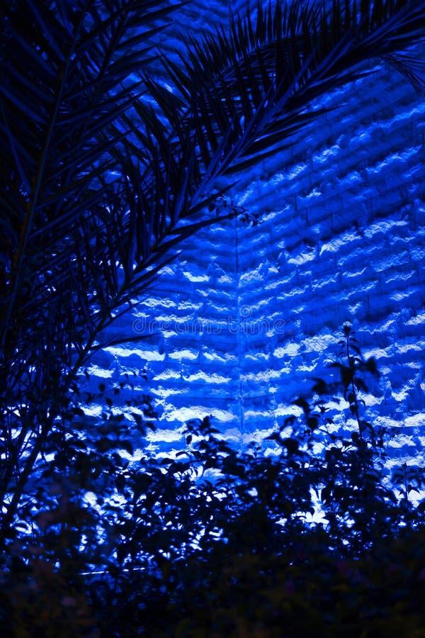 Deep Blue stock photography