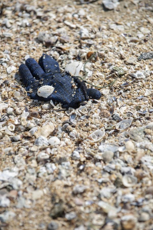 A deep blue winter yarn glove found trashed on the beach. A deep blue winter yarn glove found trashed on the beach surrounded with sea shells. A starting point stock images