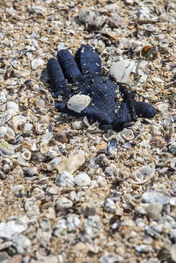 A deep blue winter yarn glove found trashed on the beach. A deep blue winter yarn glove found trashed on the beach surrounded with sea shells. A starting point stock photos