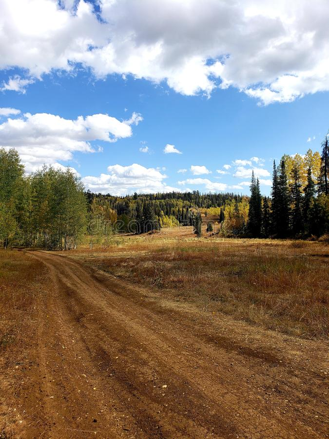 Deep brown mountain dirt road with aspen and pine trees under a white clouded blue sky royalty free stock photo