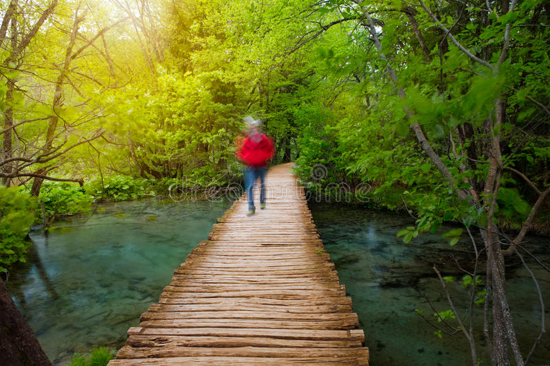 Deep forest stream with crystal clear water and walking people in the sunshine stock images