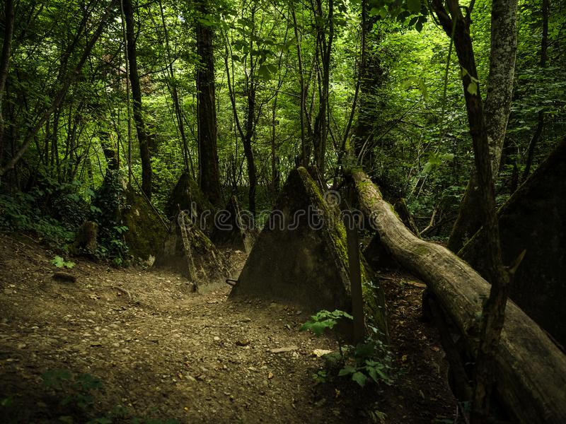 Forest path passing through WW2 defence structures on the Toblerone trail. Deep forest surrounding historic world war 2 anti tank defences along the Toblerone royalty free stock images