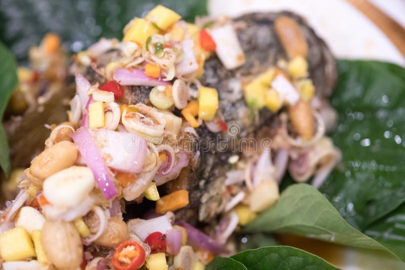 Deep fried fish with mixed herb. Thai food deep fried fish with mixed herb royalty free stock photos