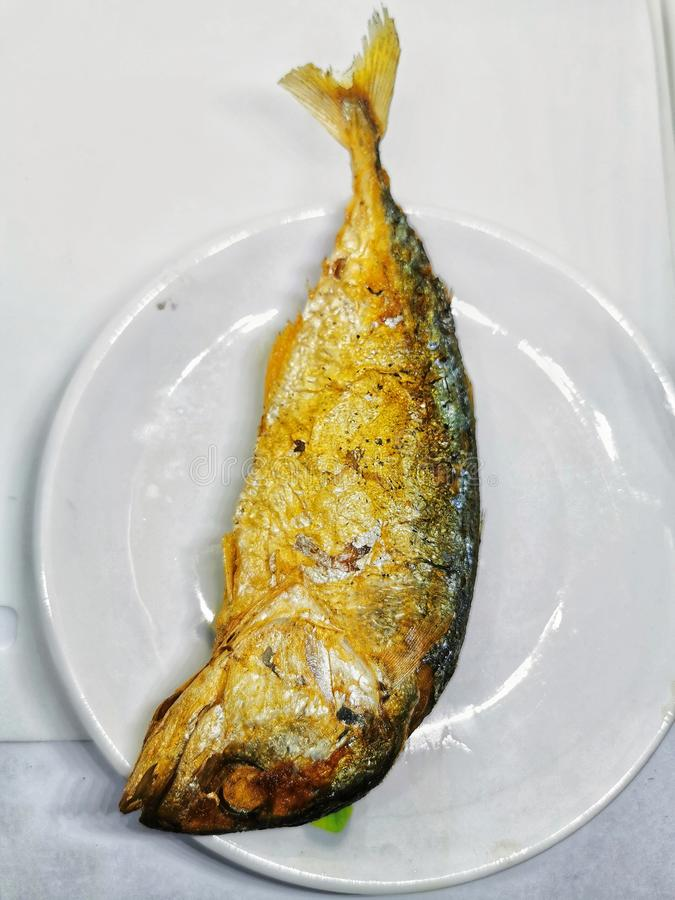 Deep fried mackerel Fish on the white Plate is regular Food Meal for Thai people in Bangkok. Deep fried mackerel Fish on the white Food Meal for Thai people in royalty free stock photos