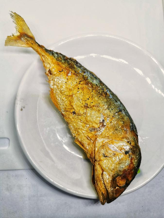 Deep fried mackerel Fish on the white Plate is regular Food Meal for Thai people in Bangkok. Deep fried mackerel Fish on the white Food Meal for Thai people in royalty free stock photography
