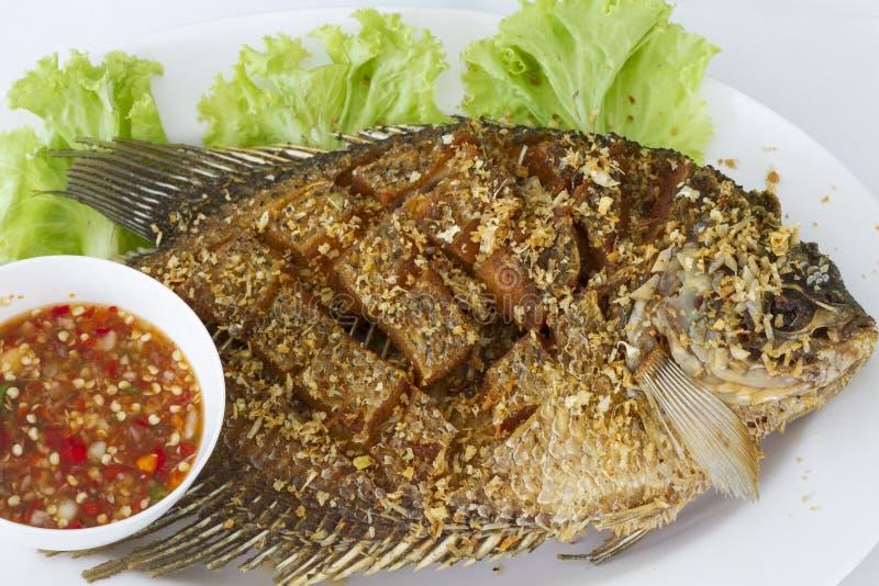 Deep fried red tilapia fish royalty free stock photos