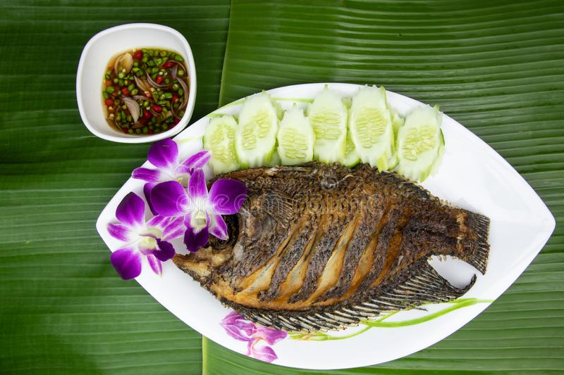 Deep Fried Tilapia fish and chilli fish sauce on top view , On dish background banana leaf royalty free stock photos