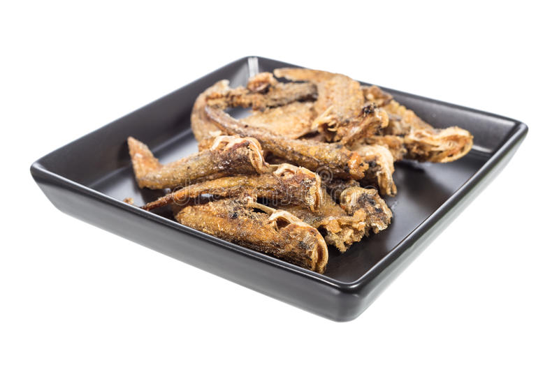 Deep fried twisted-jaw catfish royalty free stock photos