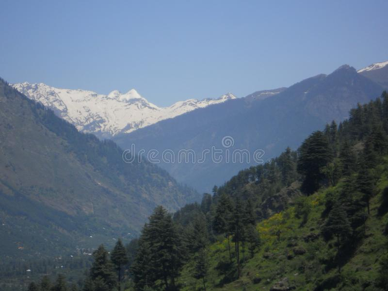 Deep green forest in snow-covered mountain range. During summer days stock photos