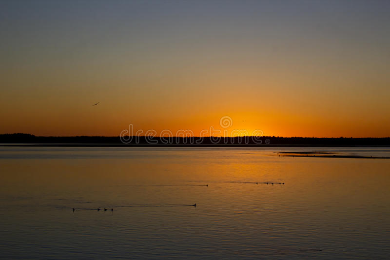Deep Orange Sunset Over Netarts Bay With Birds Oregon stock image