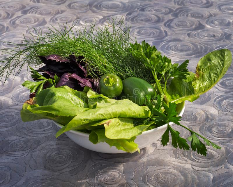 Deep plate with freshly picked peppers and aromatic herbs stock photos