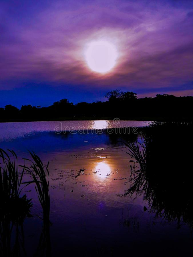 Purple Ultraviolet Sunset Sky Reflections Over The Pond. Deep purple ultraviolet sunset sky reflection in a Ponds water at nightfall in a park in New Jersey. ` royalty free stock photo