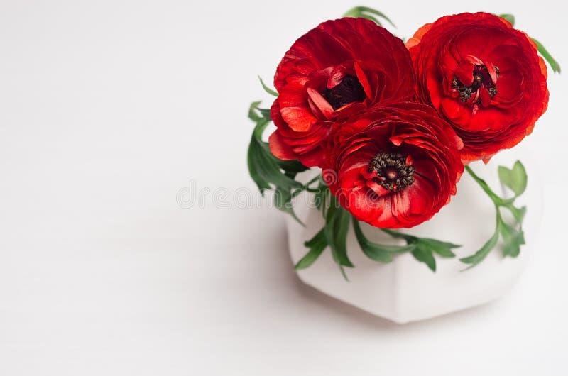 Deep red flower bouquet in elegant vase closeup on white wood background. Festive summer decor for interior. stock image