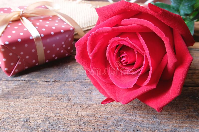 Deep red rose on wooden floor. Backdrop for Valentine's day concept. Copy space royalty free stock photos