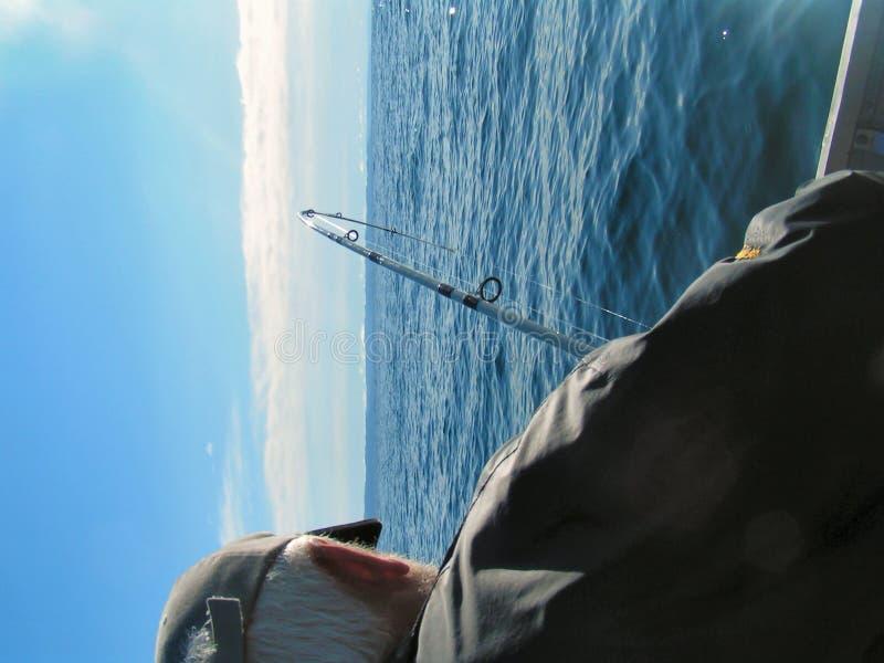 Deep Sea Fishing 4 stock photography