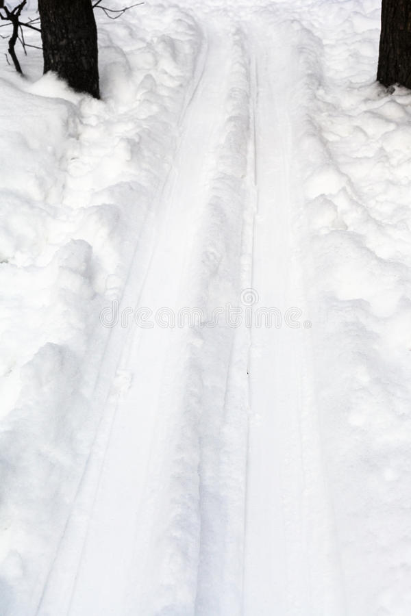 Deep ski run in forest in winter royalty free stock photo