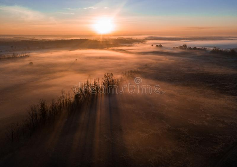 Deep thick fog in the valley. Long shadows from the trees. Atmospheric beautiful dawn. Aerial drone photo. Amazing mood royalty free stock images