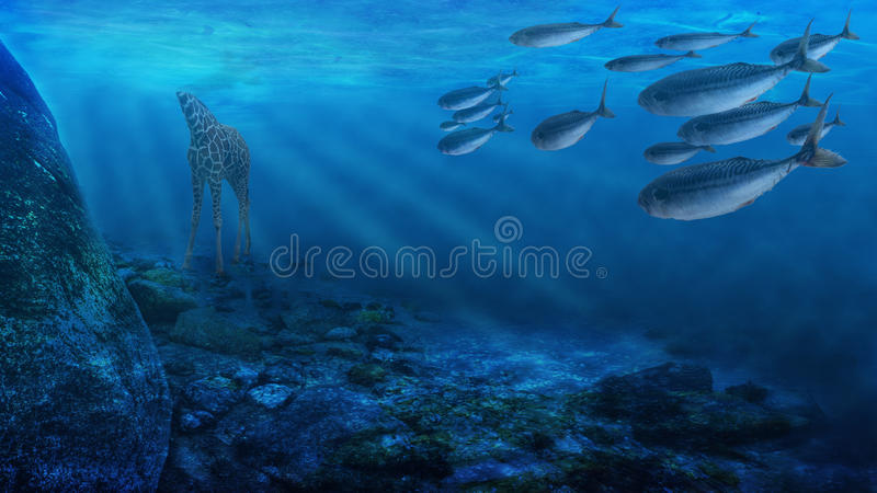 Deep Water Royalty Free Stock Images