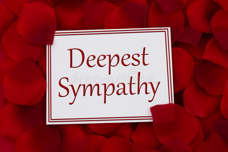 Deepest Sympathy Card. A white card with text Deepest Sympathy and a red rose petal backgrounds royalty free stock image