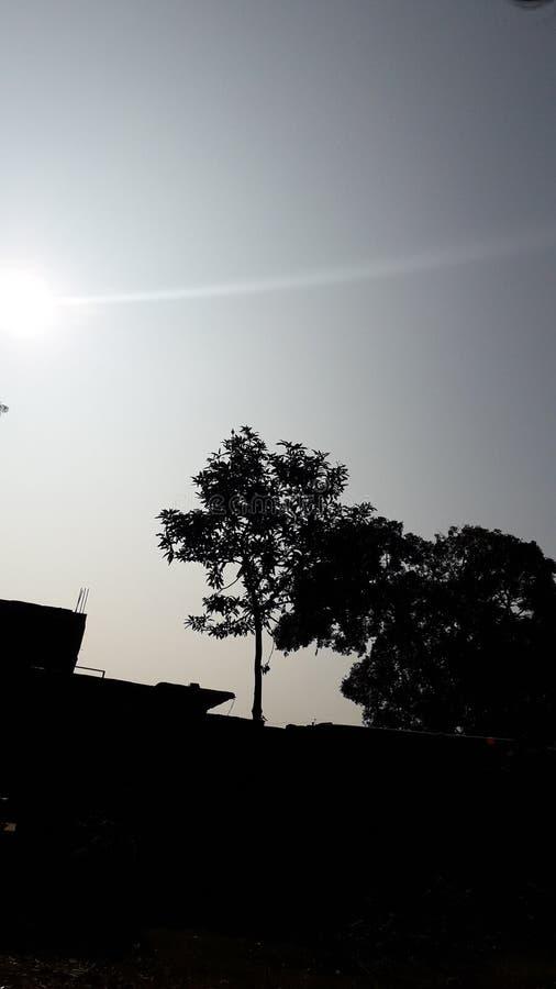 Deeping sun at evening royalty free stock photography