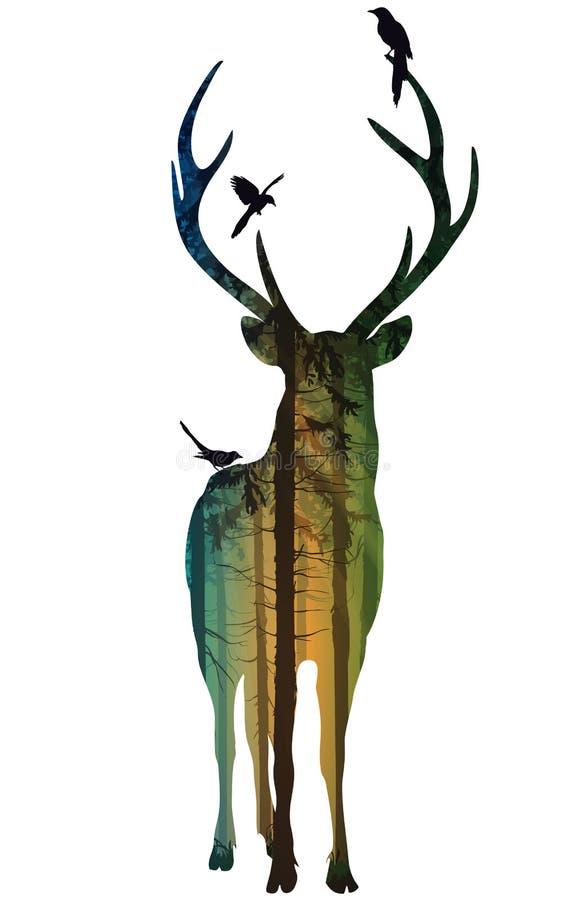 Free Deer 2 Royalty Free Stock Image - 34522646
