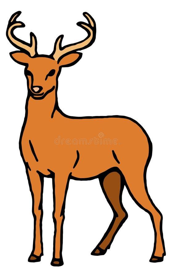 Download Deer stock vector. Image of path, hunting, horn, illustration - 24523993
