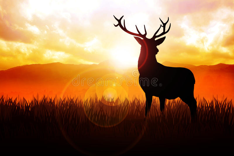 Deer. Silhouette illustration of a deer on meadow during sunrise