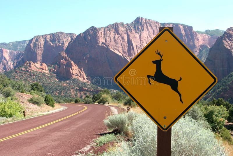 Deer ahead road sign stock image