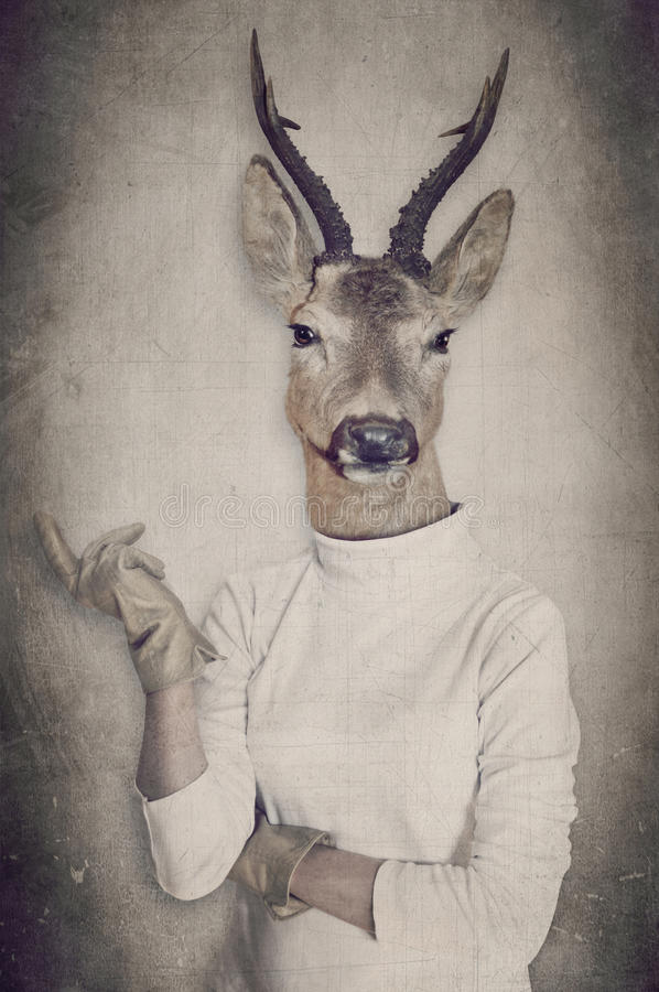 Deer in clothes. Concept graphic in vintage style. Deer in clothes. Concept graphic in vintage style royalty free stock images