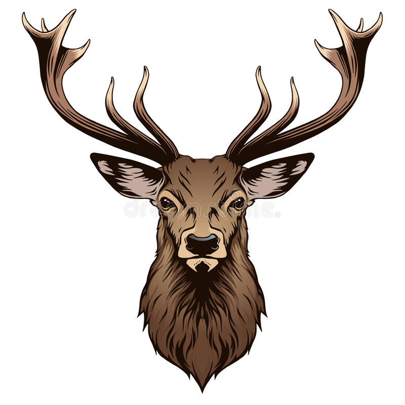 Free Deer Head Stock Photos - 57432853