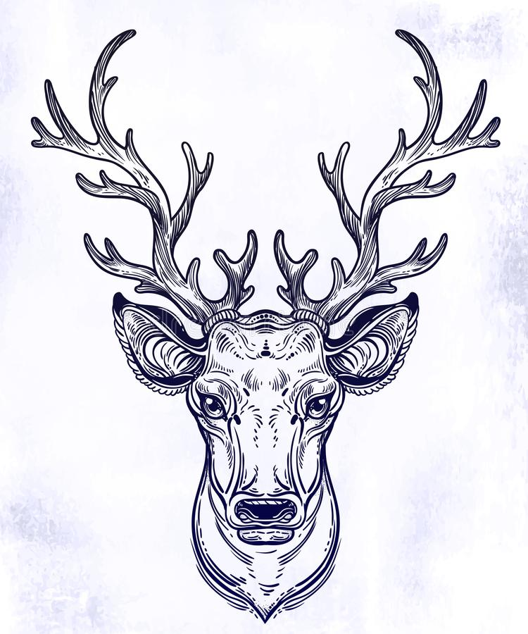 Deer head with beautiful antlers, hand drawn vintage illustration. Isolated vector art for nature and wilderness. Linear tattoo animal royalty free illustration
