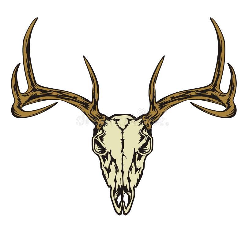 DEER HEAD SKULL stock image