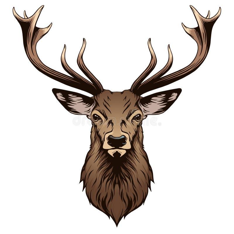 Deer head. In vector on white background
