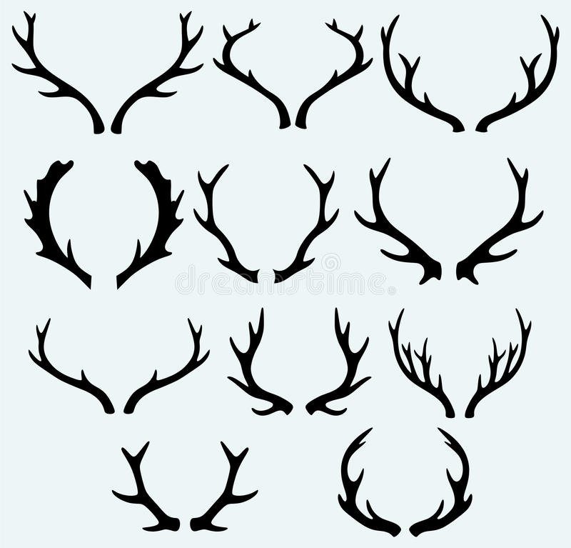 Free Deer Horns Stock Photo - 40040670