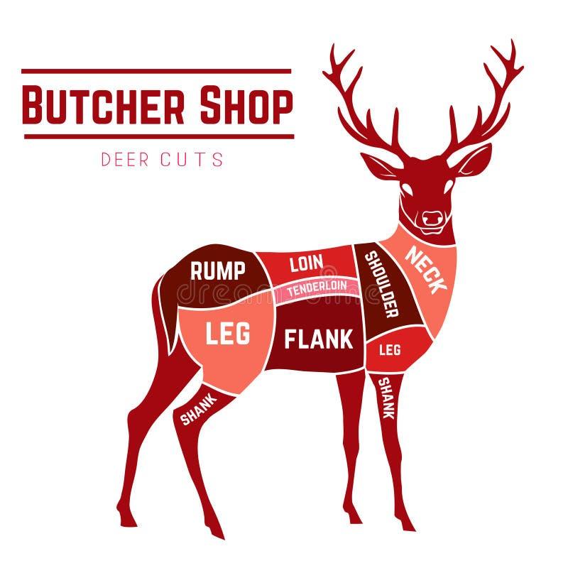 deer meat cuts in color stock vector illustration of animal 53656027 rh dreamstime com Deer Meat Breakdown Deboning Deer