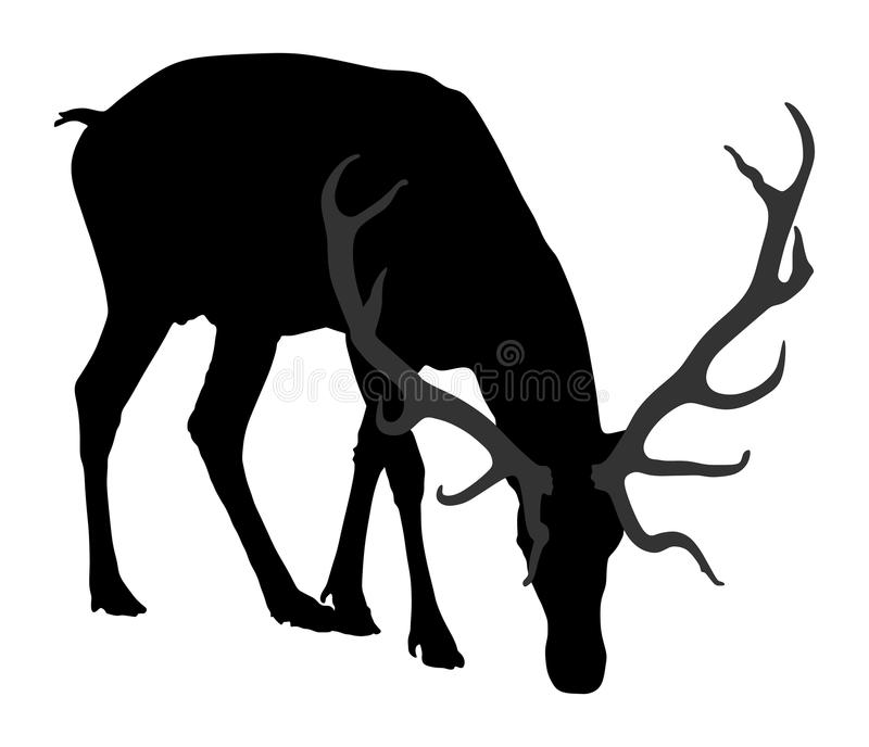 Deer silhouette. Deer grazing grass. royalty free illustration