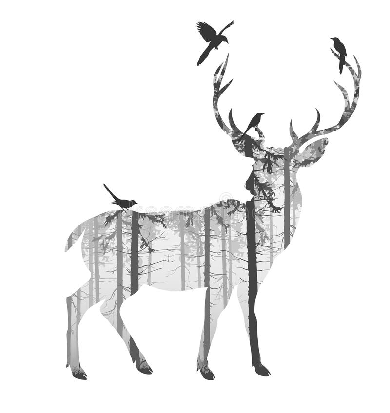 Deer. Silhouette of a deer with pine forest and birds, black and white colors, white background, illustration