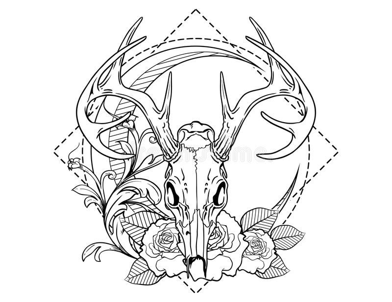Deer skull tattoo sketch with roses vintage neo traditional tattoo sketch. Hand drawn retro animal tattoo sketch with roses in vintage style. ornate romantic vector illustration