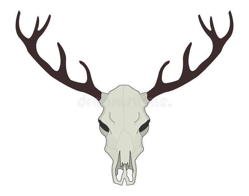 deer skull vector illustration color stock vector illustration of rh dreamstime com deer skull vector art free deer skull vector free