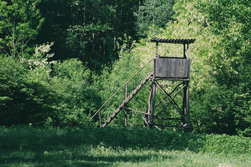 Deer stand hunting tower in green forest on a sunny summer day stock image