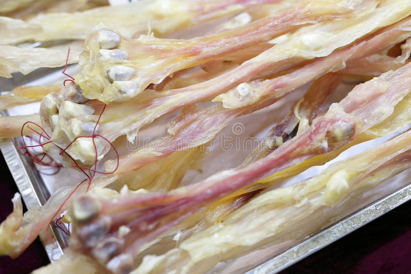 The deer tendon. Deer tendon indications: treatment of excessive fatigue, rheumatoid arthritis, impotence royalty free stock photography