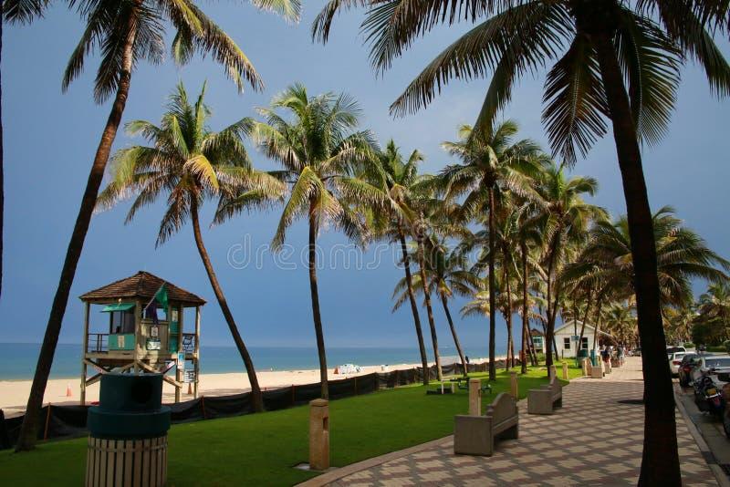 Deerfield海滩走道棕榈树救生员驻地 免版税库存照片