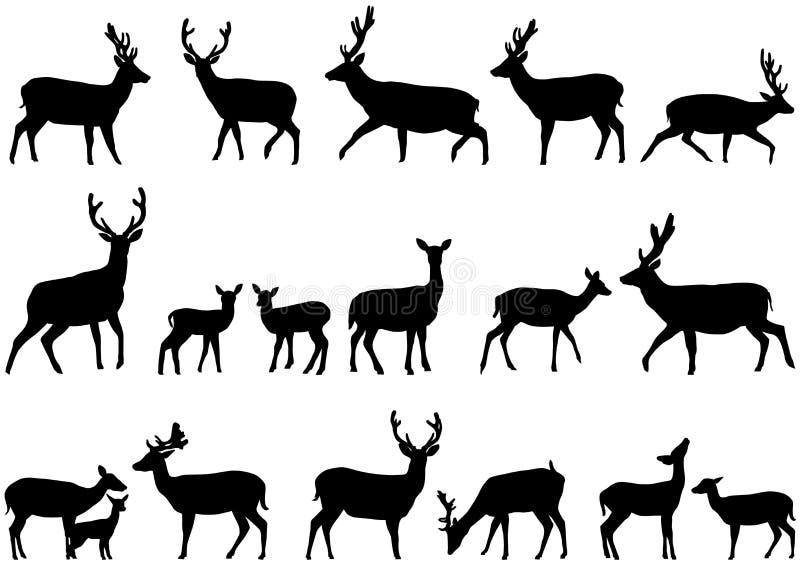 deers royaltyfri illustrationer