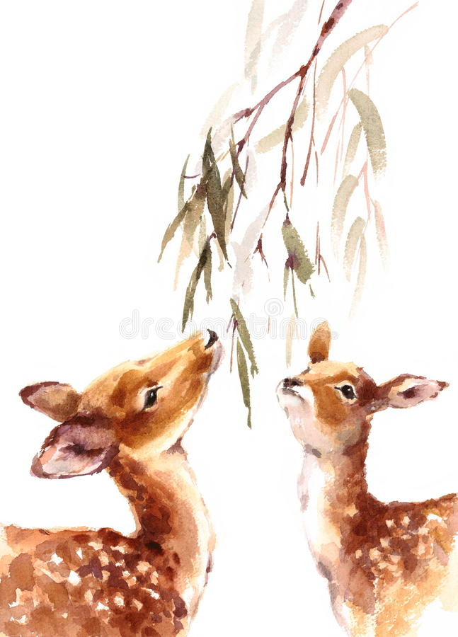 Free Deers Looking Up Eating Leaves Watercolor Animal Illustration Hand Painted Royalty Free Stock Image - 77360006